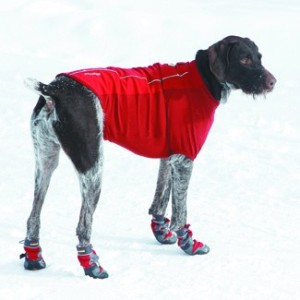 Foot Protection For Your Pooch